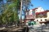 Двухкомнатная квартира в Заельцовском бору