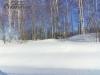 Земельный участок в Барышевском сельсовете рядом Академгородок