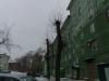 Четырехкомнатная квартира на Котовского Фасад