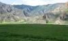Земельный участок 12 Га на Алтае