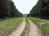 СНТ в Бурмистрово 16,5 Га размежеван на 100 участков за 7,5 млн.руб.